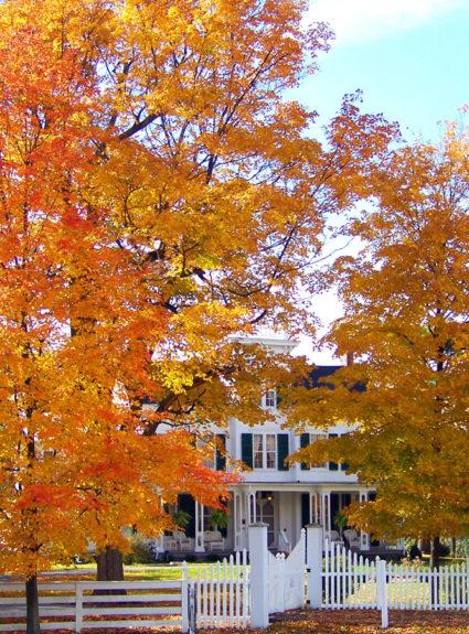 A Fall Checklist.